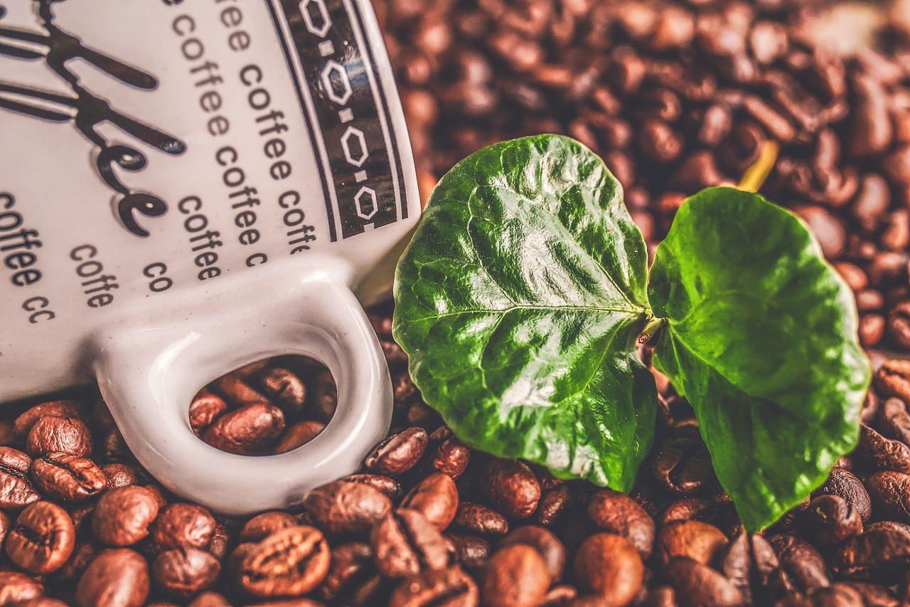 кружка с надписью кофе, зерна и листья кофейного дерева