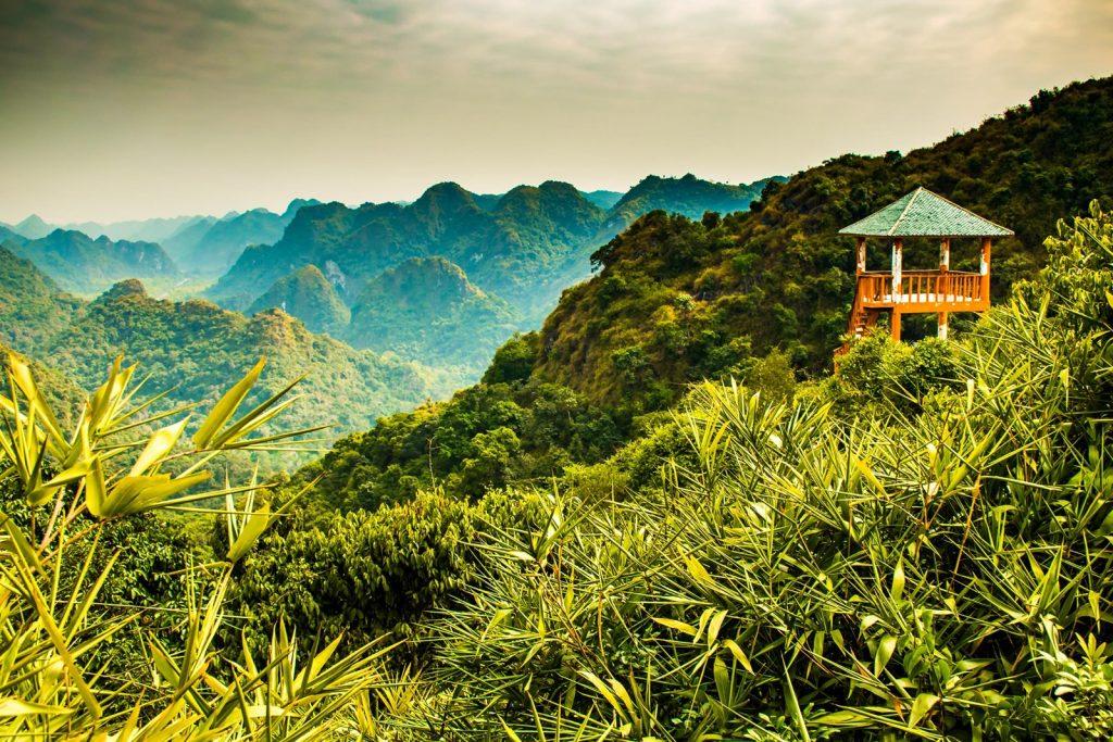 ландшафт Вьетнама