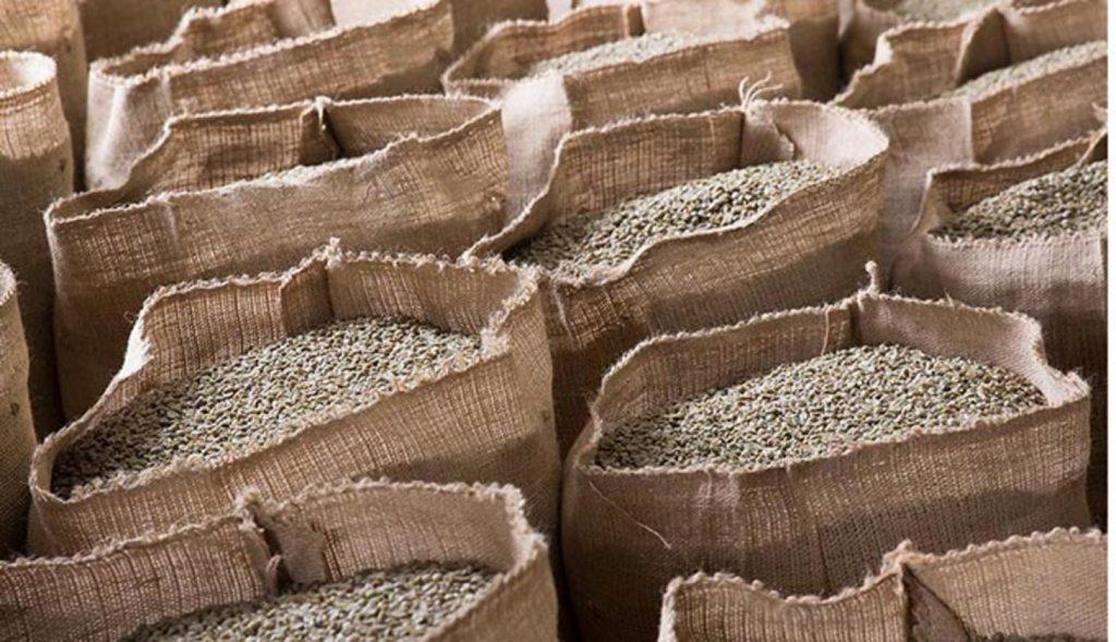 отсортированные зерна
