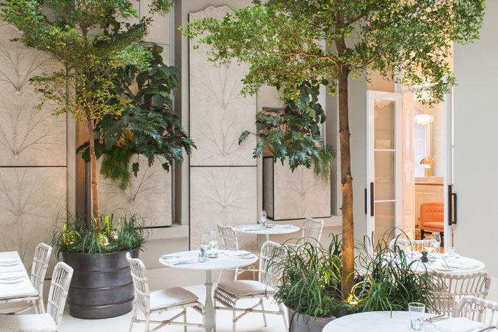 бело-зеленая кофейня